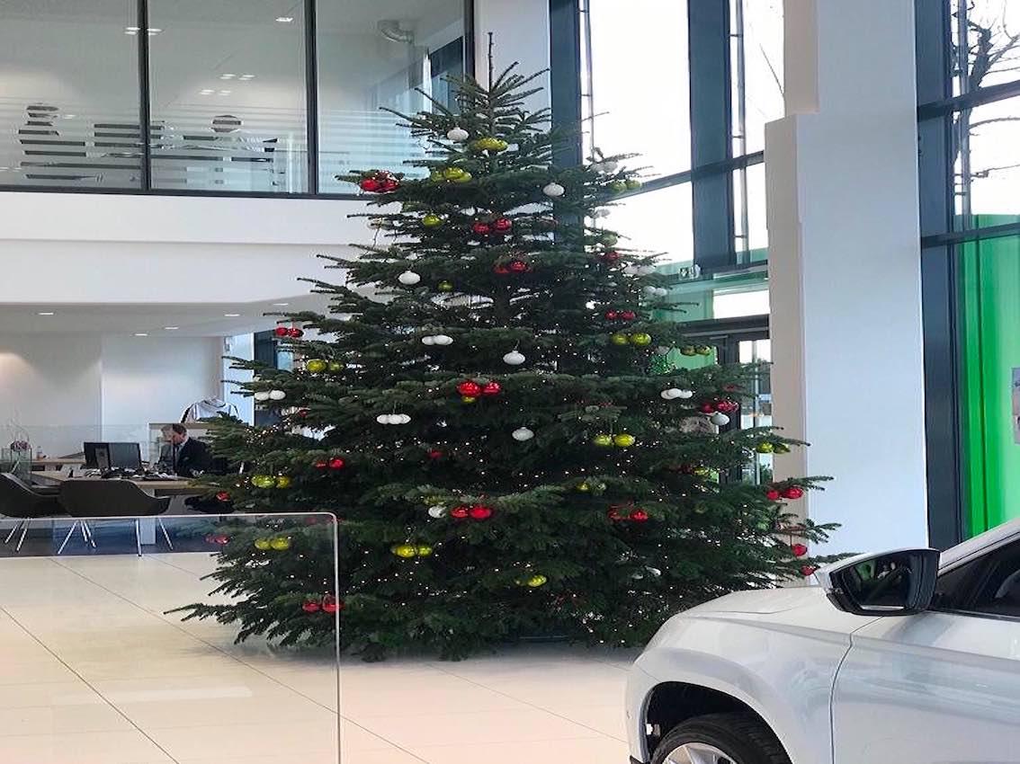 Autohaus München großer breiter Weihnachtsbaum
