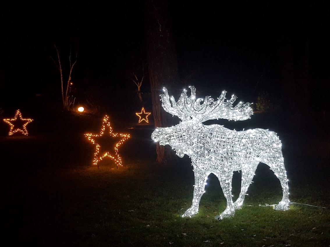 Weihnachtsbeleuchtung München LED Hirsch Groß