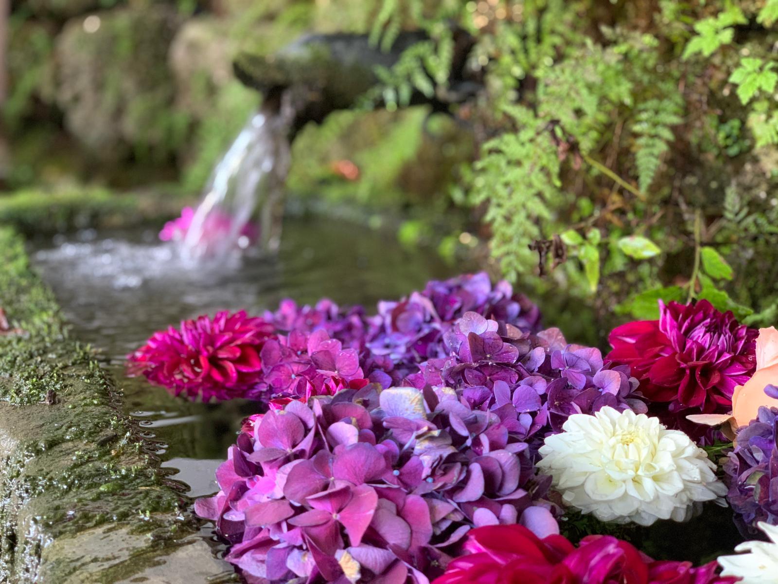 Blumenschmuck für Party im Wasserbrunnen