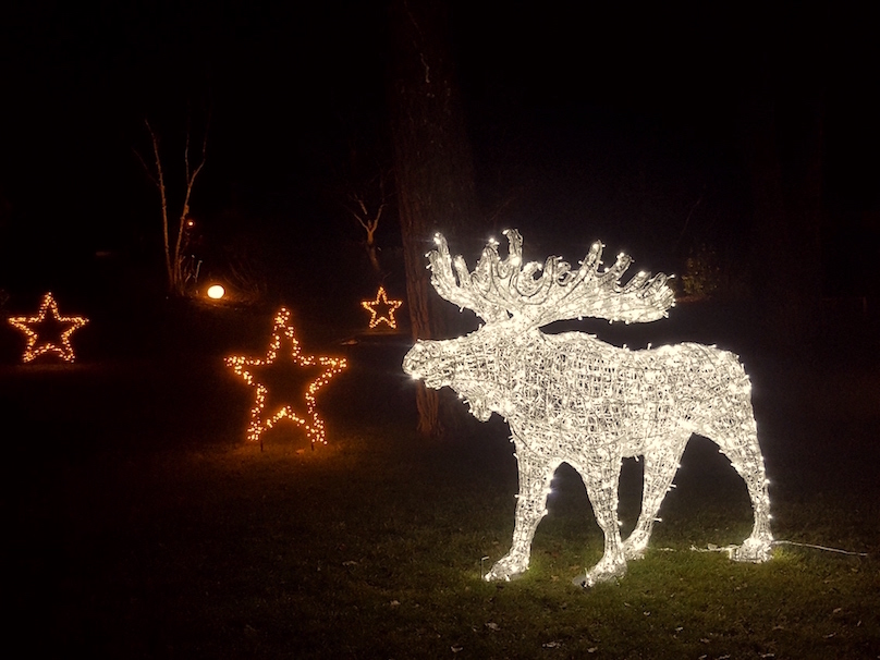 Weihnachtsbeleuchtung vom Profi